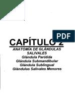 Anatomia de Las Glandolas