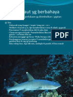 18 Binatang Laut Berbahaya