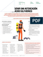 ficha-acido.pdf