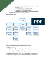 Estructura Del MS