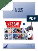 MSES.pdf