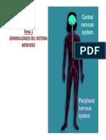 Tema 1_Sistema Nervioso_Generalidades (2017)