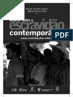 Olhares Sobre Escravidao Contemporanea