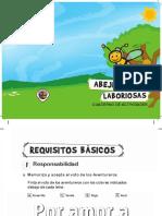 Abejitas-laboriosas-Cuaderno-de-actividades.pdf
