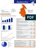 Ayacucho-censo-pdf.pdf