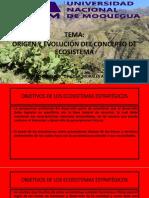 ECOSISTEMAS ESTRATEGICOS 2