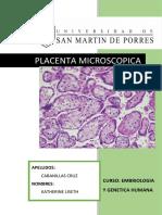 269845044-PLACENTA-MICROSCOPICA-docx.docx