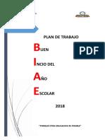 Plan Biae 2018