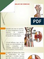 TRABALHO DE CIENCIAS.pptx