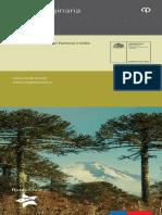 Ruta Originaria.pdf
