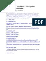 Debate N1 Modulo 1 Criterios de Auditoria