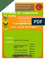 diagnosticodelambayeque-140527175707-phpapp01