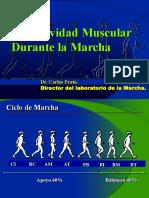 Actividad Muscular Final