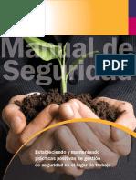 YME-MANUAL-04 Manual de Seguridad IFA (2010)