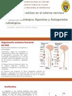 Fármacos Que Actúan en El Sistema Nervioso Autónomo