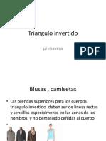 Triangulo invertido.pptx