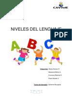 Niveles Del Lenguaje