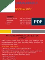 Ppt Encephalitis Kelompok 8