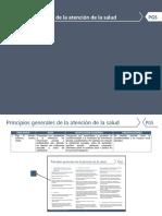 Adaptación principios generales de la atención de la salud.pdf