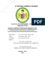 Informe de Practicas-caqui