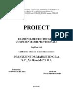 Proiect-Neacsu Cameliad