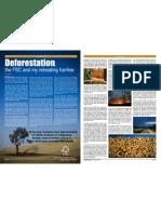 Deforestation & the Forest Stewardship Council