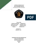 LAPORAN-PENDAHULUAN.docx