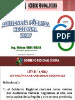 Audiencia Publica 2017 - GRL