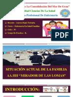 Situacion Actual de La Familia Diapo22
