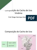 Resumo - Composição Do Cacho de Uva - Vindima