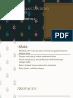 pencernaan herbivora.pptx