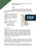 Estudio de caso Algodón - Selva.doc