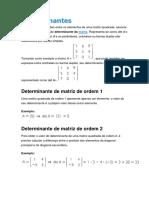 Determinantes - Teorias e Exercícios