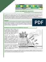 Leitura de Minuto 12 - Agrotóxicos