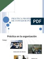 Práctica en Las Organizaciones