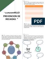 Cuadernillo de Prevencion de Recaidas