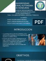 DIAPO CC Y C TORACICA con Videos.pptx