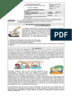 Guia 9 1 Gobierno Escolardoc