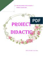 Proiect Flori de Primavara Traditional