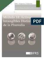 18_Activos-Intangibles-Distintos-de-la-Plusvalía_2013.pdf