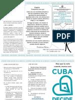 Plegable cuba decide elecciones.pdf
