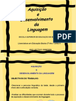 pptdossonsspalavras-100613101201-phpapp02