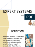 Expert+Systems