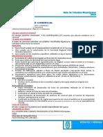 2.1.1.1 Patente Comercial