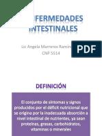 Clase 03_Enfermedades Intestinales