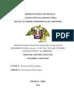 Universidad Nacional de Trujillo- Informe