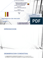 Segmentacion de mercado.pptx