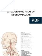 angiographicatlasofneurovascular-120702151454-phpapp02.pdf