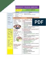 Procesos Pedagogicos Por Areas
