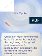 Frogss Life Cycles2013.ppt